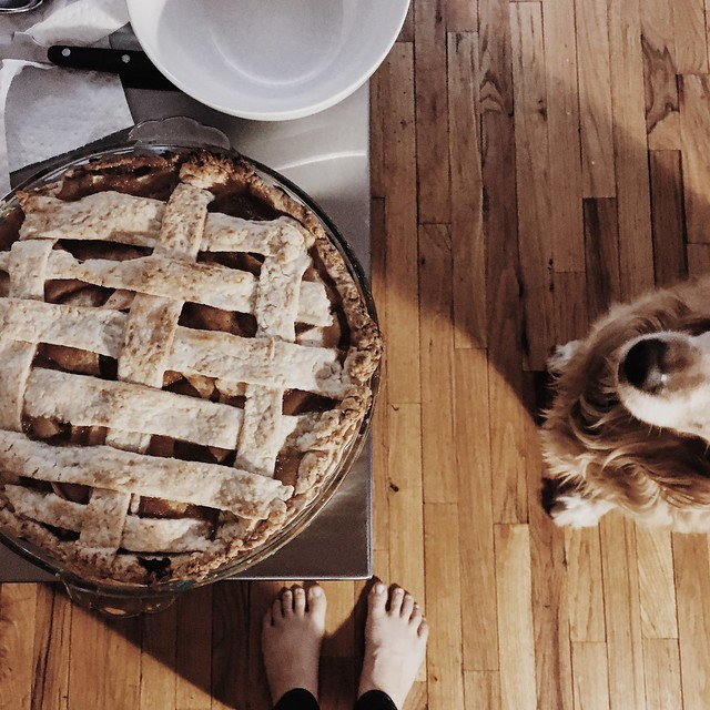 Homemade Apple Pie Thanksgiving 2016 // girlandthegood.com