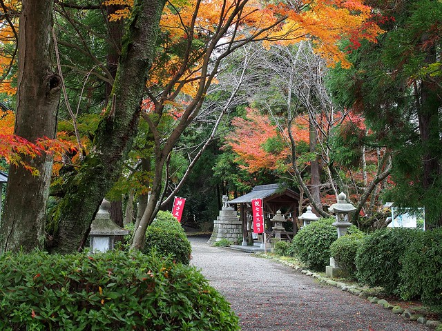 Autumn colors in Takano