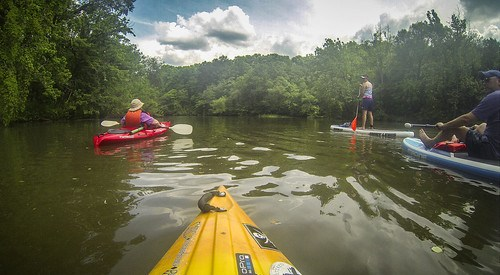 Kayaking and SUP on Saluda Lake-83