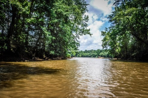 Goat Island in the Broad River-95
