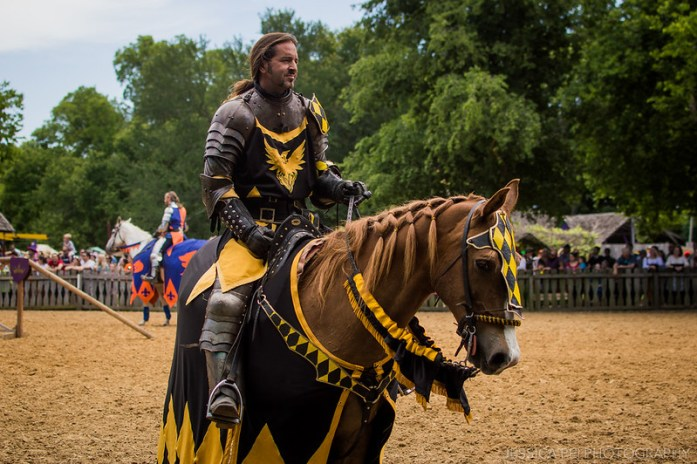 Scarborough Fair Dallas Joust