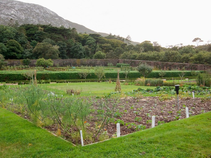 Victorian Walled Garden at Kylemore Abbey