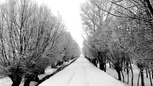 Sivas'ta Kar