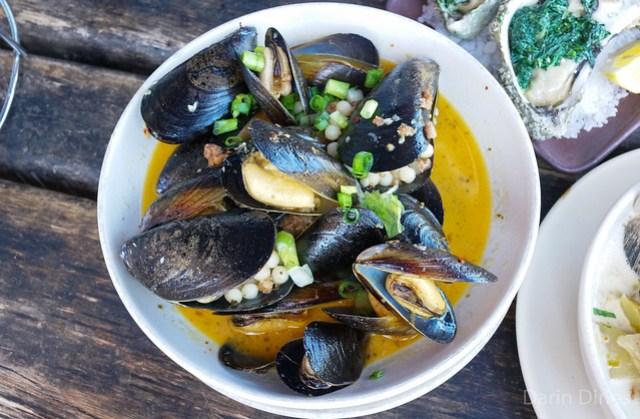 Steamed Mussels merguez sausage, ras el hanout, israeli couscous
