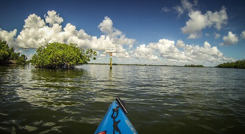 Indian River Paddling-48