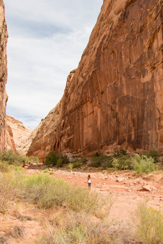 09.07. Capitol Reef National Park