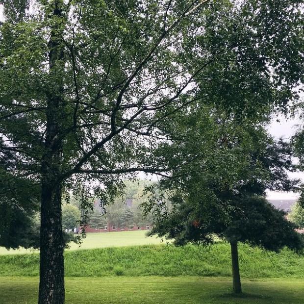 Photos | August Break | No Apathy Allowed