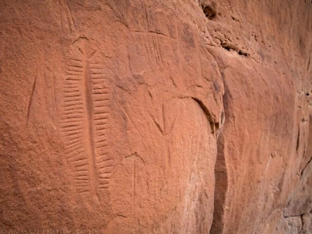 Incised Petroglyphs