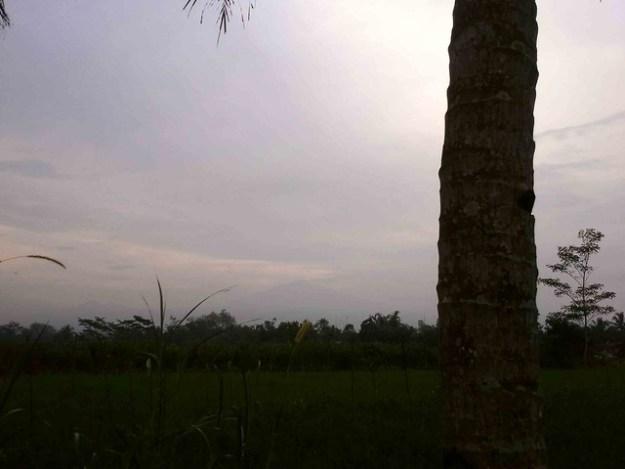 Mt Merapi from Homestay