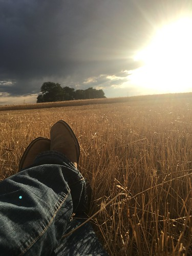Enjoying the view.