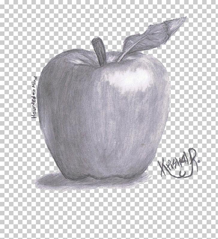 Still Life Drawing Pencil Shading Fruits | Unixpaint