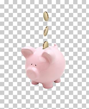 piggy bank diez # 52