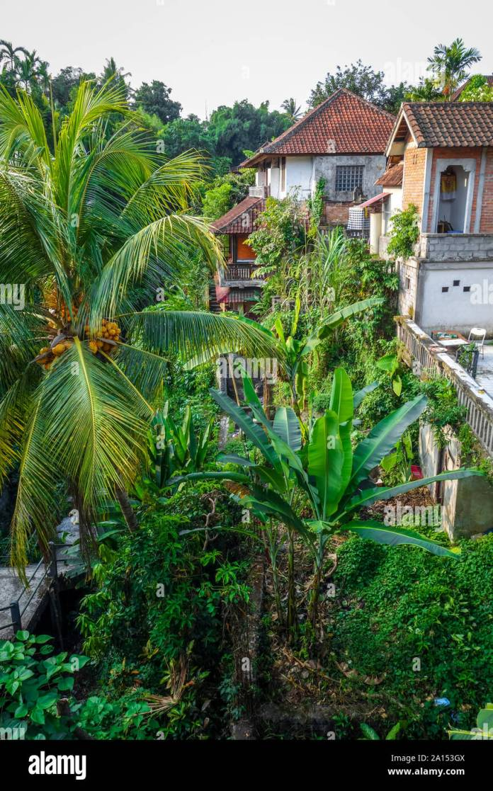Traditional Houses In Jungle Ubud Bali Indonesia Stock Photo Alamy