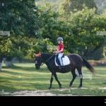 Cute Young Rider On Horseback Enjoying Horse Riding At Summer Garden Stock Photo Alamy