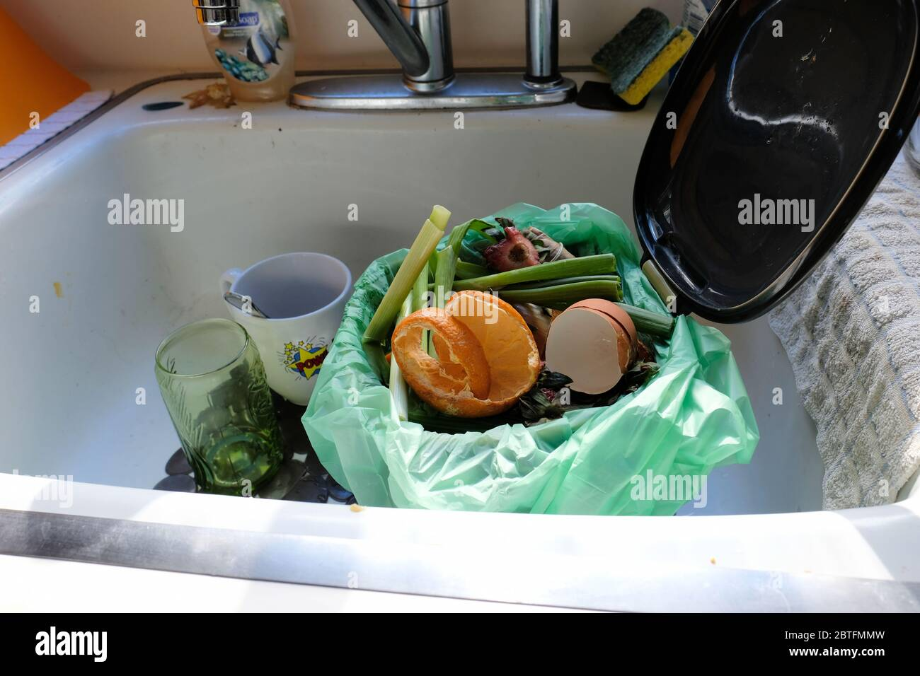 https www alamy com food scraps in a compost bin in a kitchen sink food waste collected in a bin for home composting and gardening image359304649 html