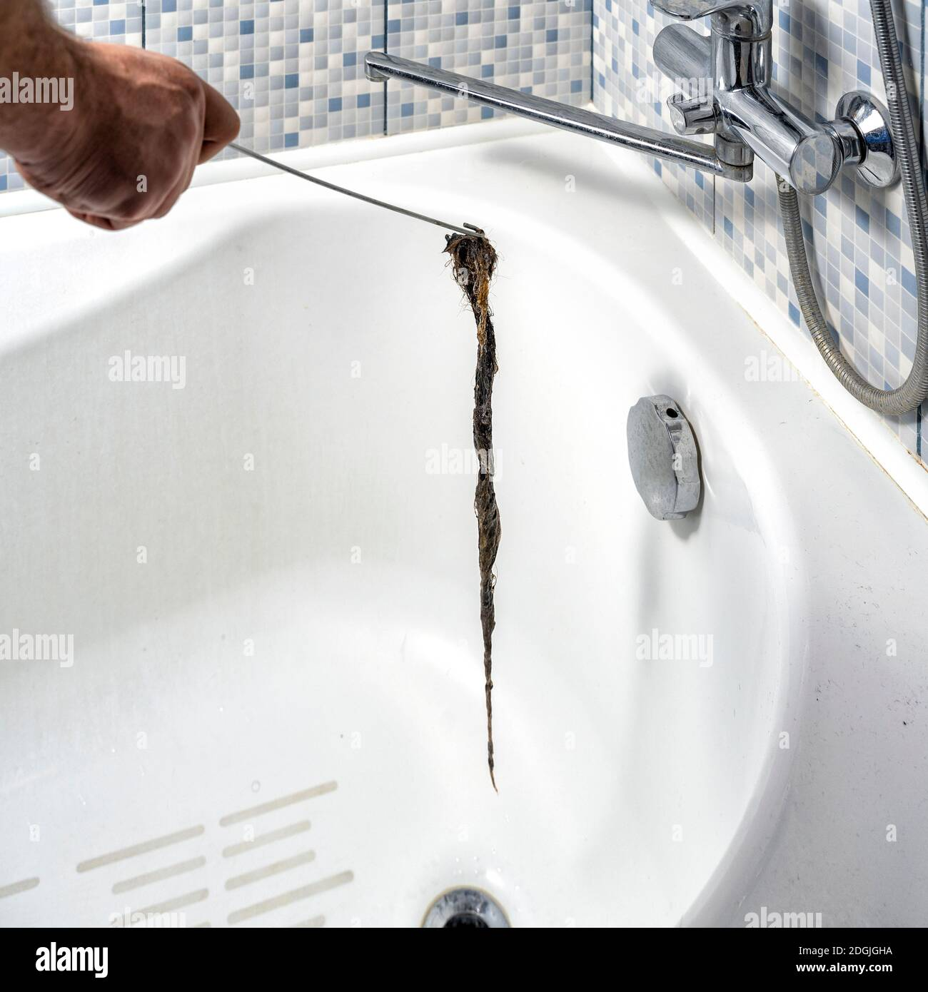 https www alamy com clogged drain in the bathroom a plumber pulls out a clot of dirt with a tool image388870758 html
