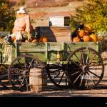 Antique Farm Wagon In Old Deseret Village In Salt Lake City Utah Stock Photo Alamy