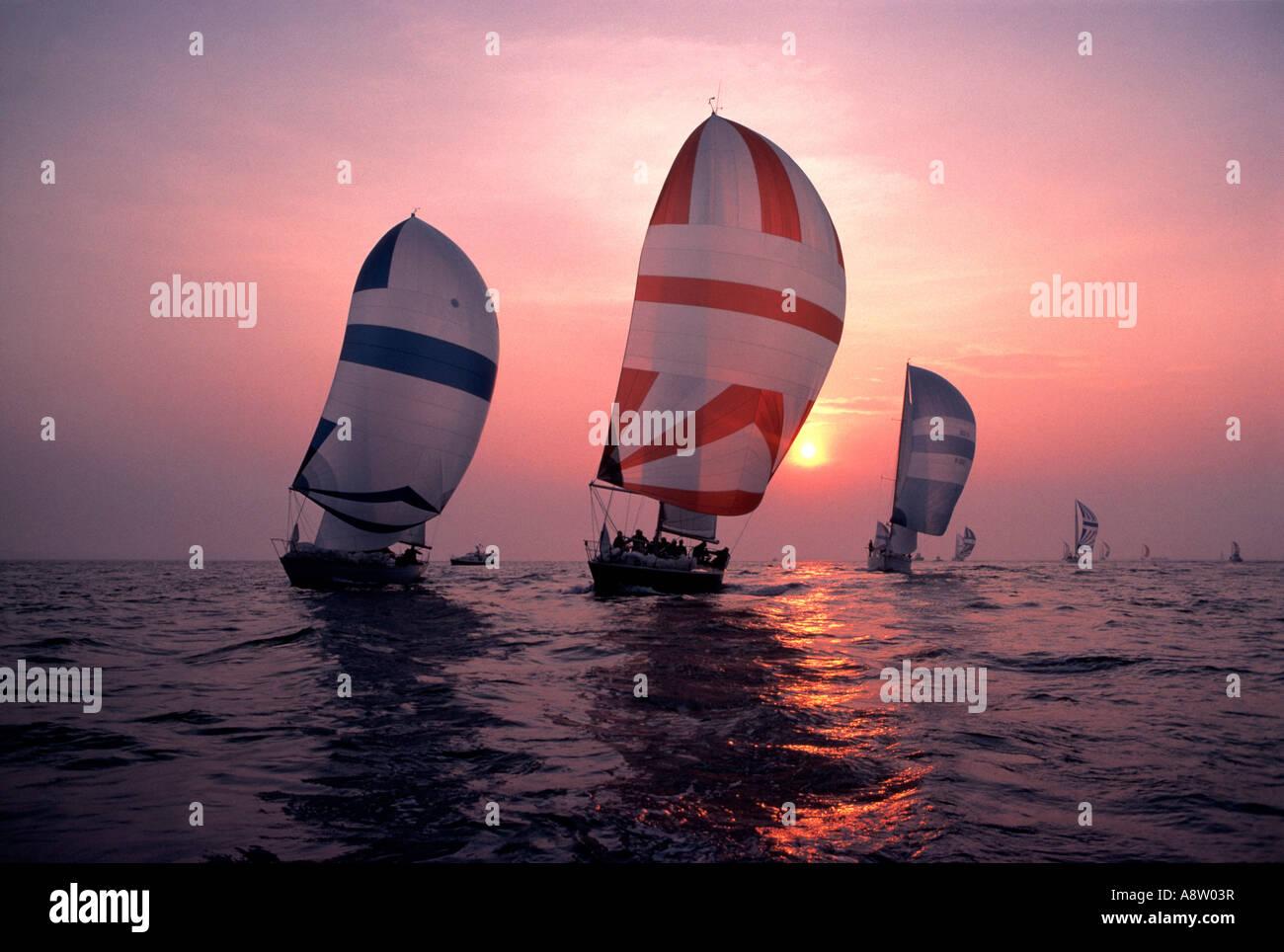Sailing Yachts Yacht Race At Sunset Spinnaker Sails