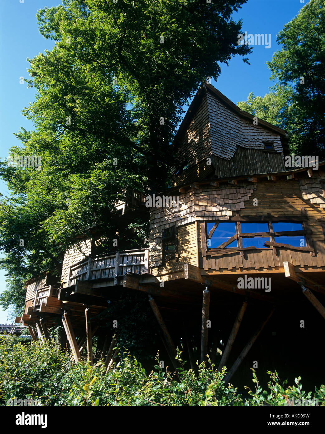 The Worlds Largest Tree House At Alnwick Gardens In Northumberland Stock Photo Alamy