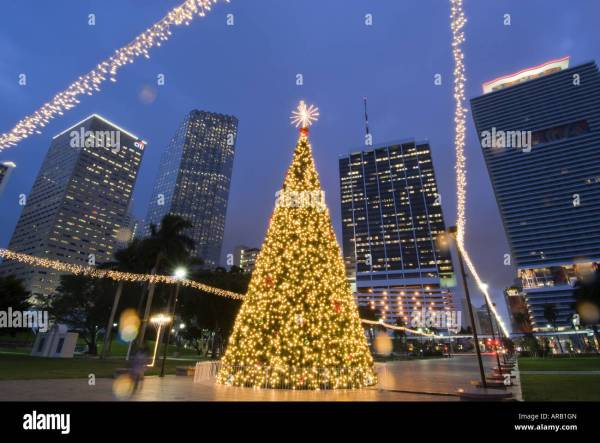 christmas lights miami # 66