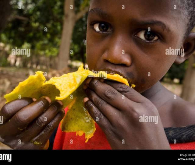 A Boy Eats A Mango Stock Image