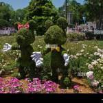 Mickey And Minnie Mouse Topiary Shrub At Walt Disney World Resort In Stock Photo Alamy