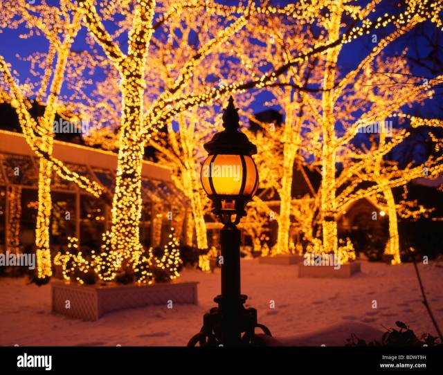 Christmas Central Park New York City Usa
