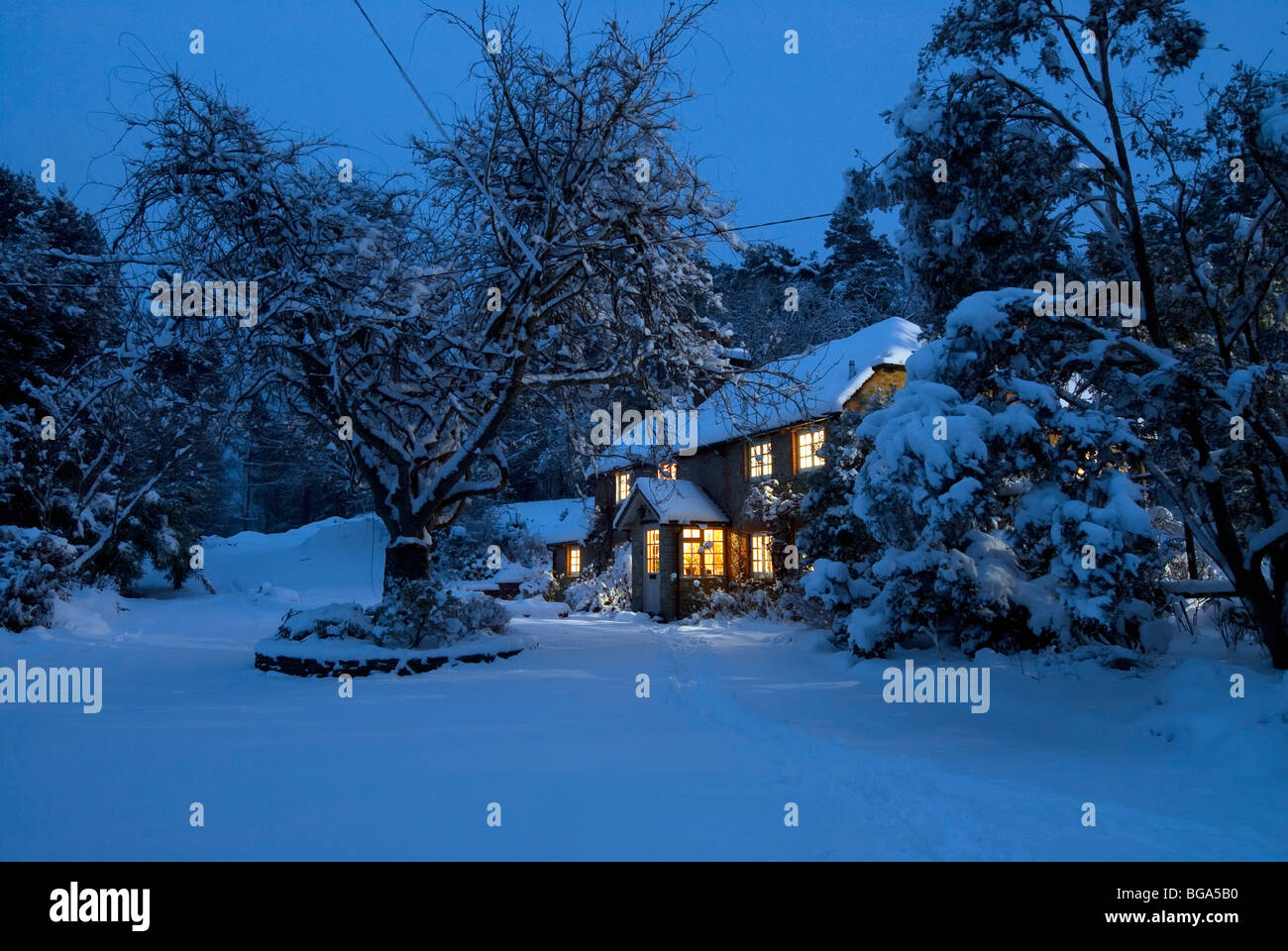 Christmas Card Image Of A Snowy Landscape Scene With Cozy