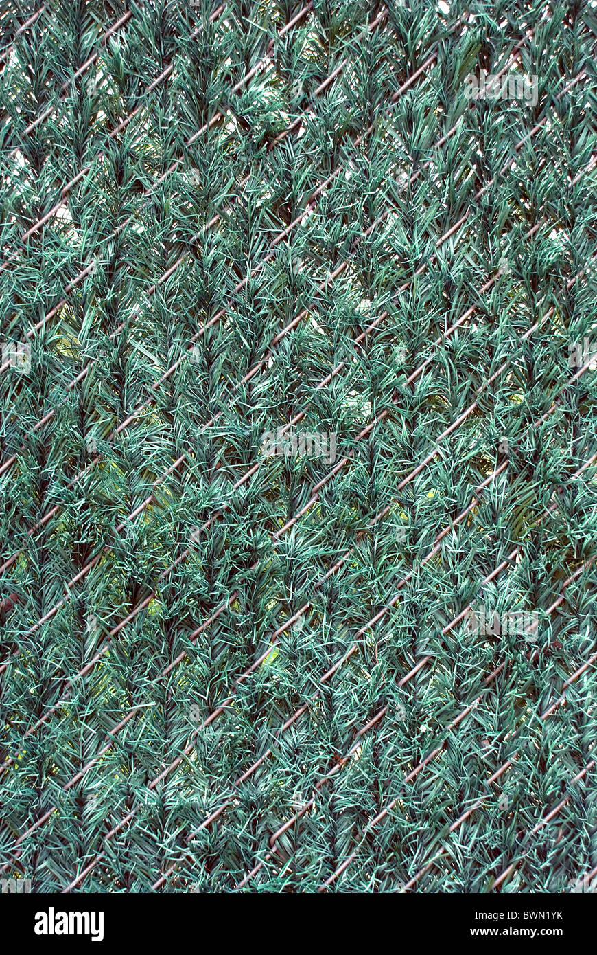 Image Result For Pre Made Chain Link Fence Panels