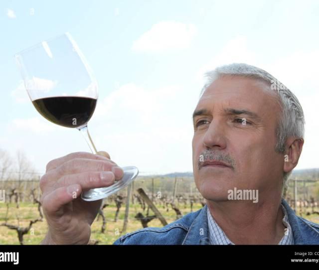 Mature Wine Producer Stock Image