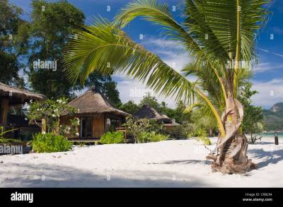 Bungalow on the sandy beach, Koh Mook Sivalai Beach Resort ...