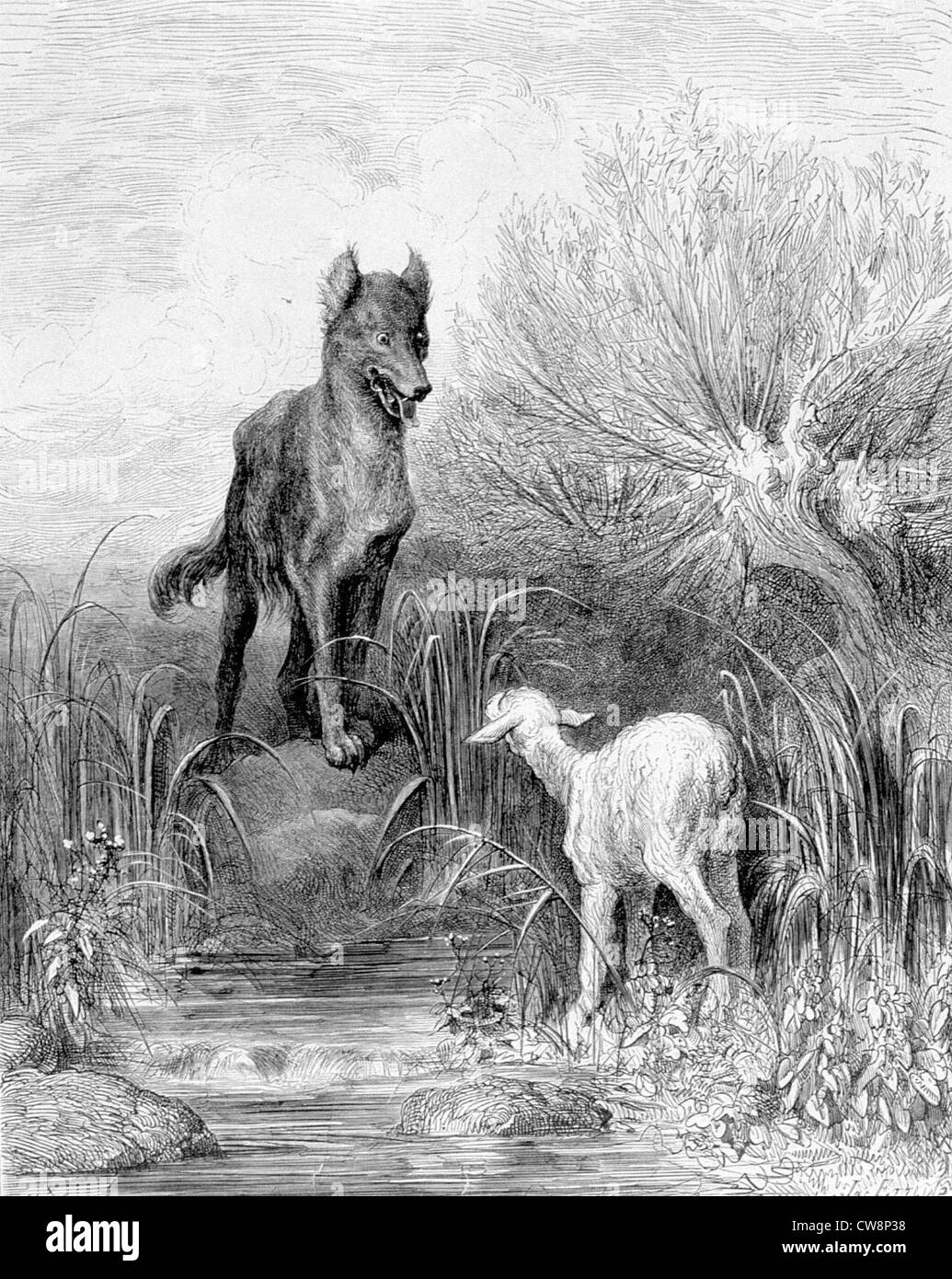 The Wolf And The Lamb Stock Photos Amp The Wolf And The Lamb