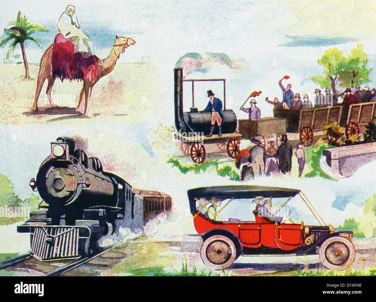 Land Transportation Camel Ship Of The Desert First