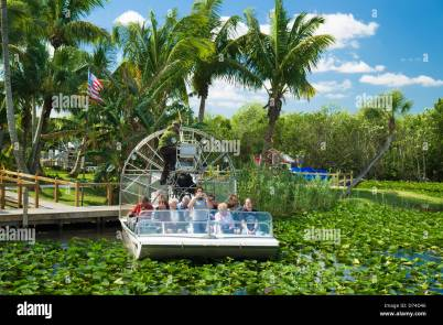 Air Boat ride through the everglades national park, Florida, USA Stock  Photo - Alamy