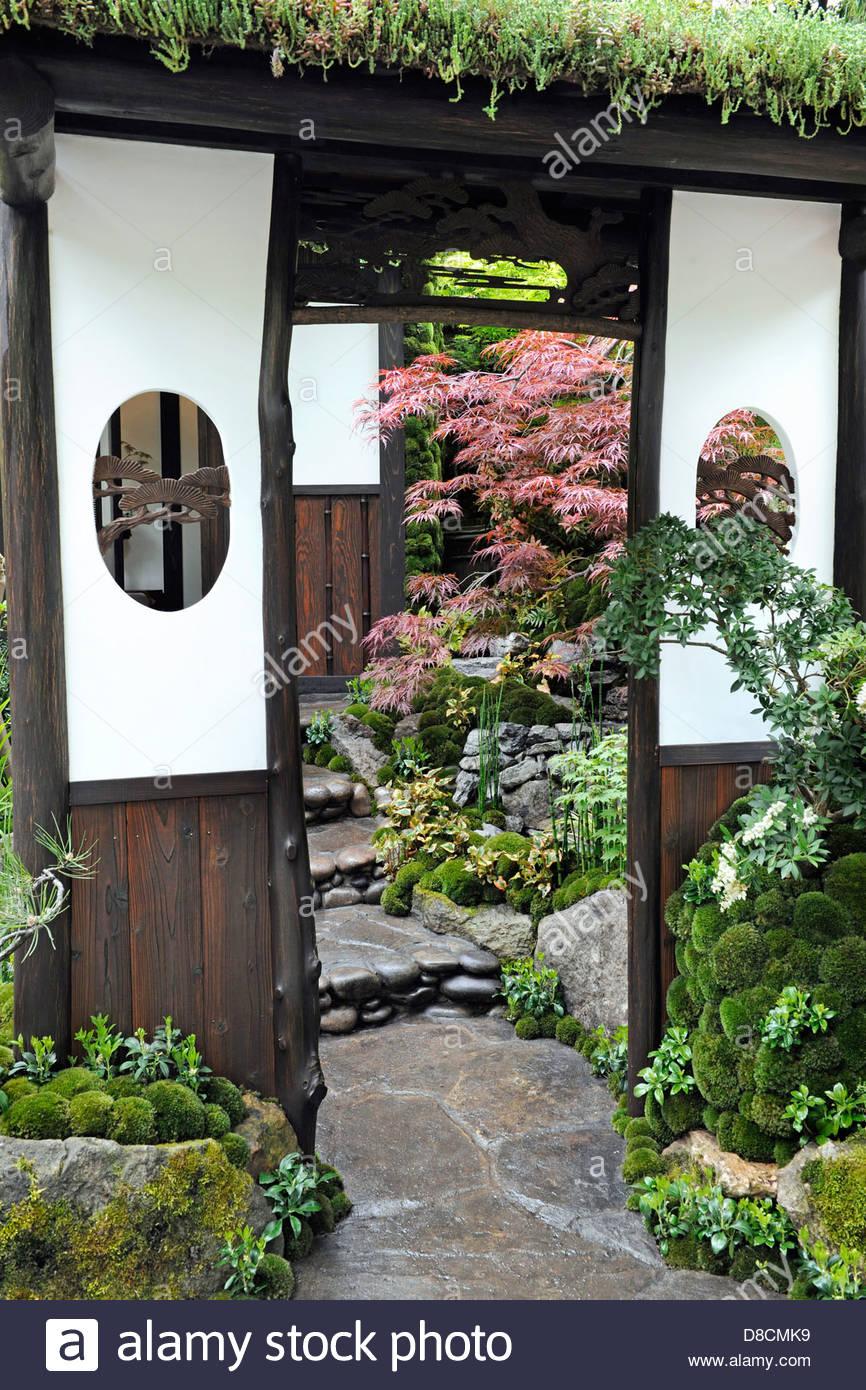 Imagini pentru tokonoma flower