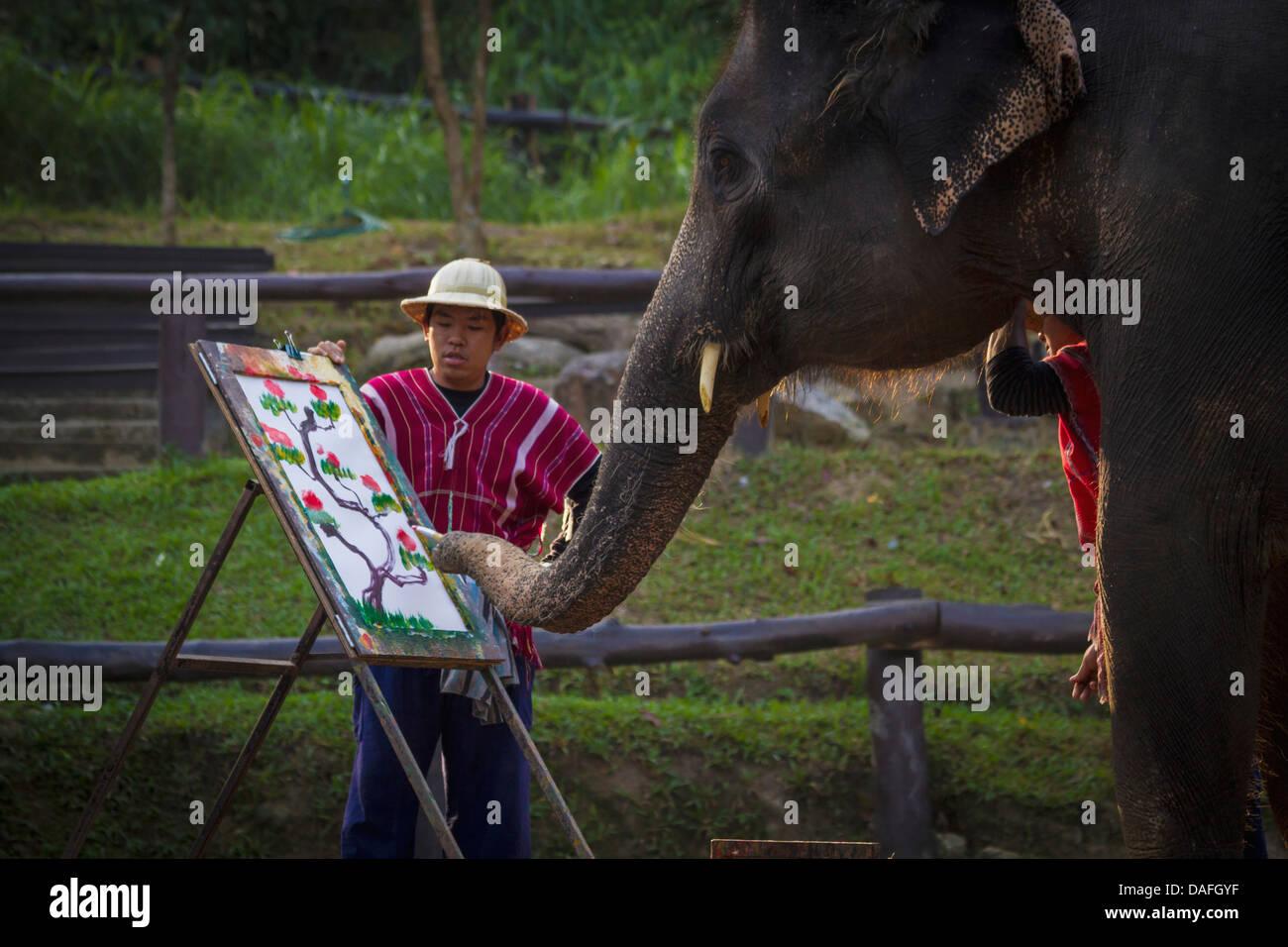 Drawing Elephant Stock Photos Amp Drawing Elephant Stock