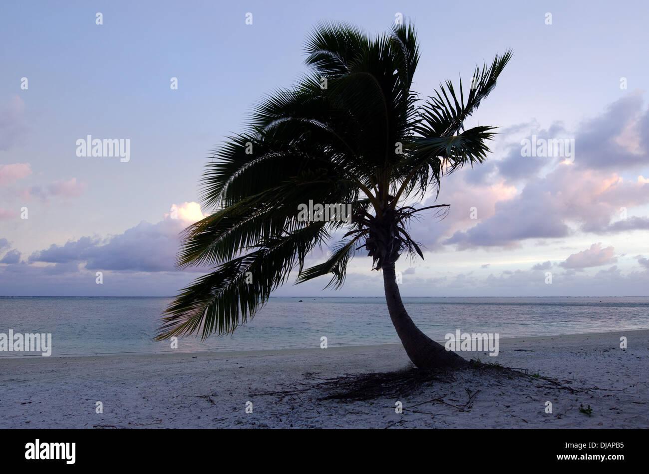 Oceania Polynesia Cook Islands Aitutaki Stock Photos