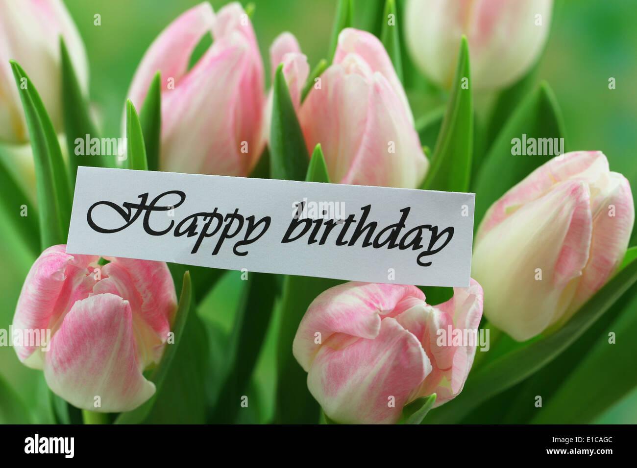 Happy Birthday Card With Pink Tulips Stock Photo Alamy