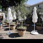 Outdoor Seating Area Of A Franschhoek Restaurant South Africa With Stock Photo Alamy
