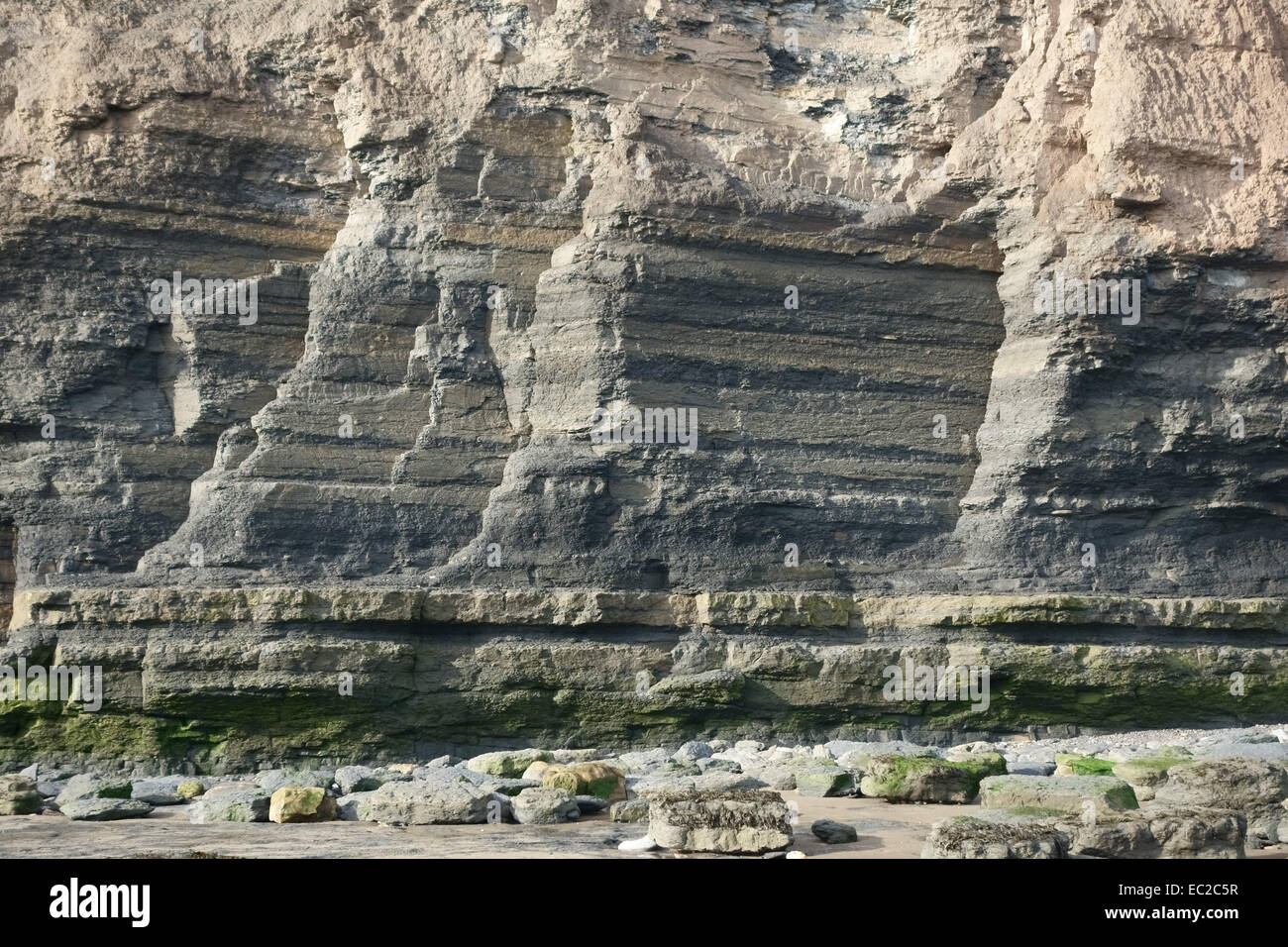 Fossil Bearing Sedimentary Rock Strata Forming The Cliffs