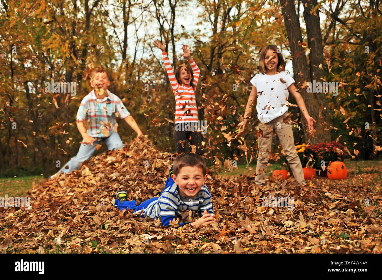 Four Kids Playing In Fall Leaf Pile Stock Photo