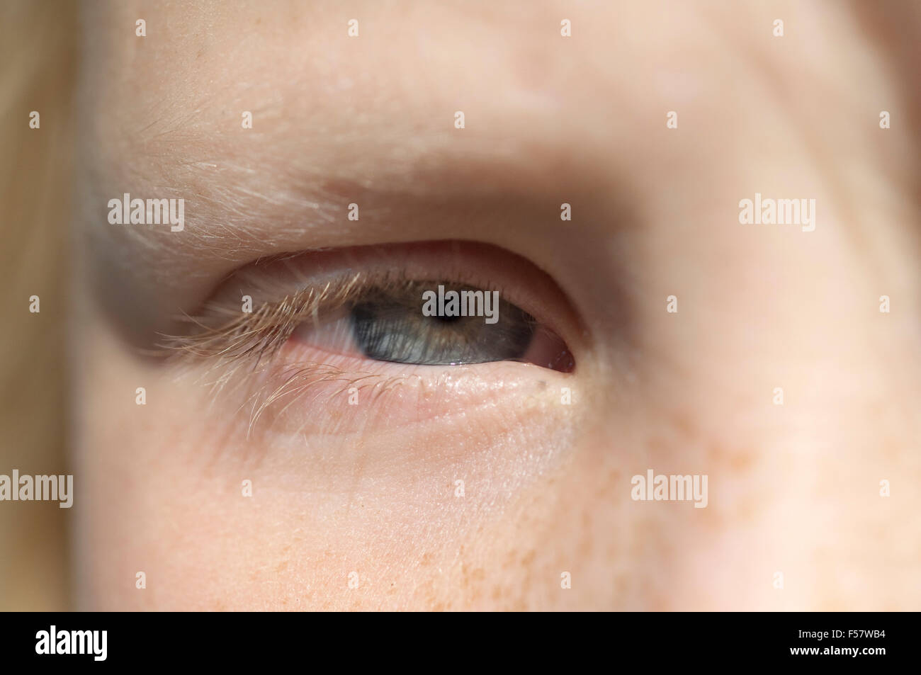 Blaugrau High Resolution Stock Photography And Images Alamy