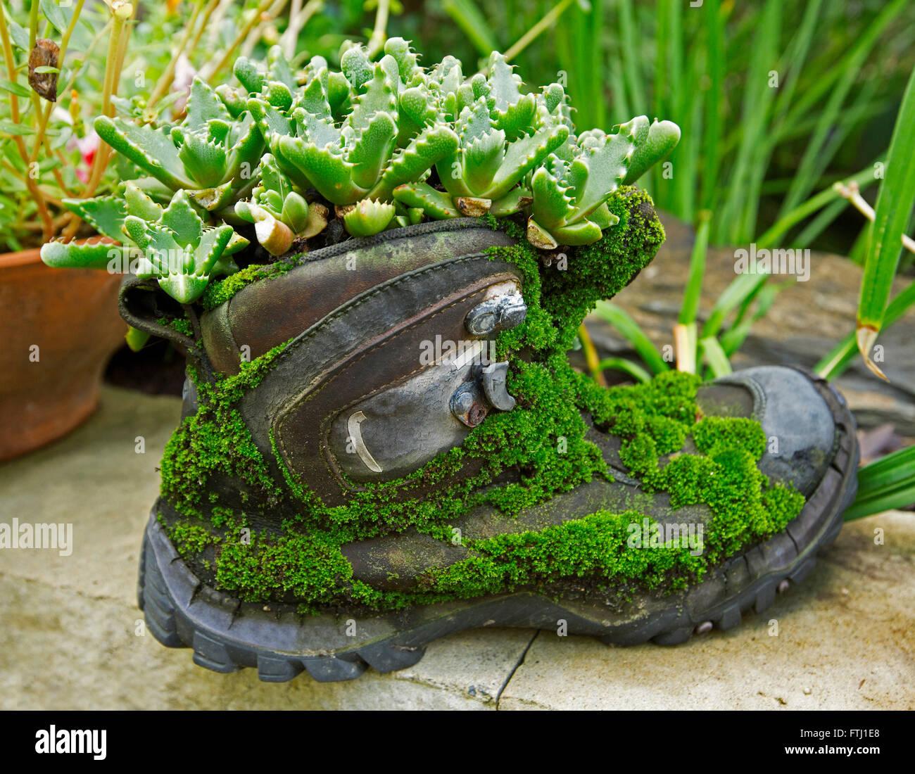 Unusual Garden Planters