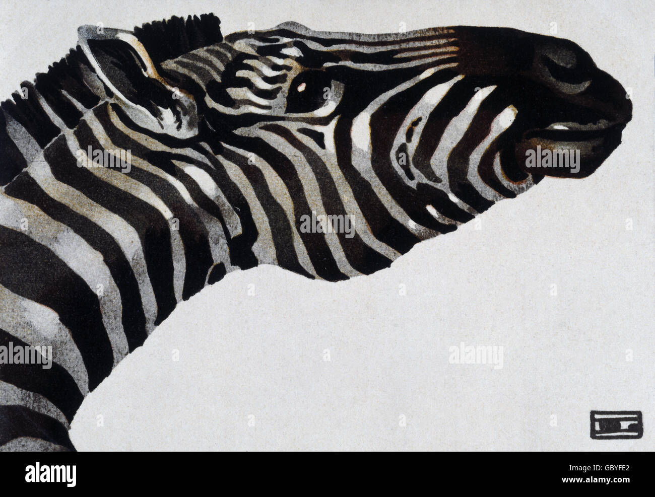 Zebra Poster Stock Photos Amp Zebra Poster Stock Images