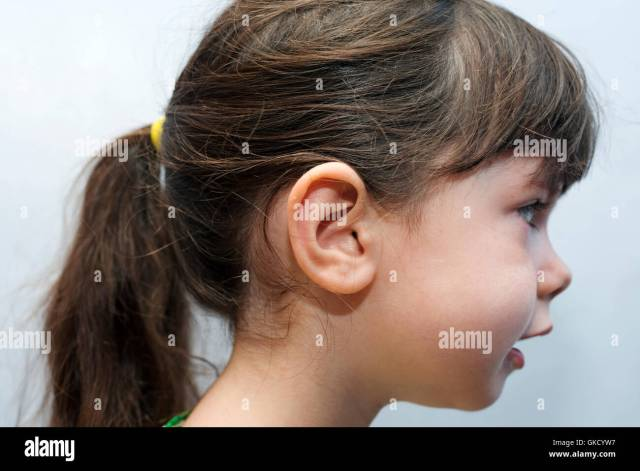4-year old girl with ponytail hairstyle stock photo