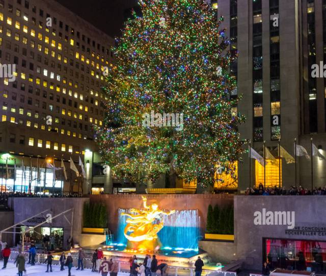 Giant Christmas Tree At The Rink At Rockefeller Center In New York City