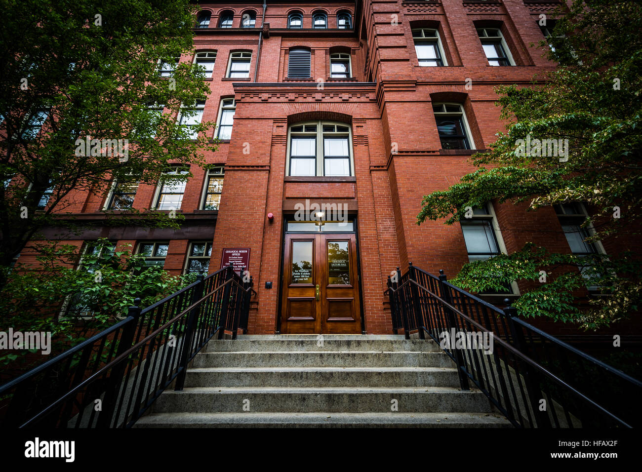 Image result for museum harvard Edward O. wilson Museum of Comparative Zoology