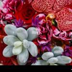 Bouquet With Red Orchid Flowers Roses And Succulents Party Decor Stock Photo Alamy