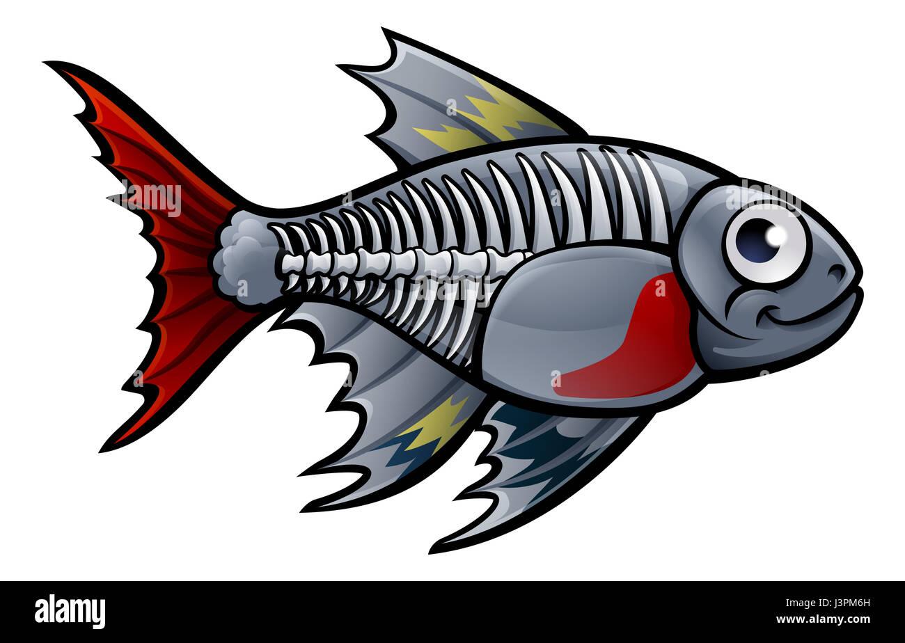 X Ray Fish Worksheet