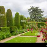 Topiary Of Yew High Resolution Stock Photography And Images Alamy